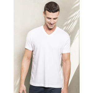K376 Organic V-neck Men's T-Shirt