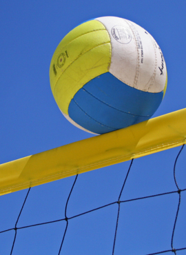 Sport - Volley